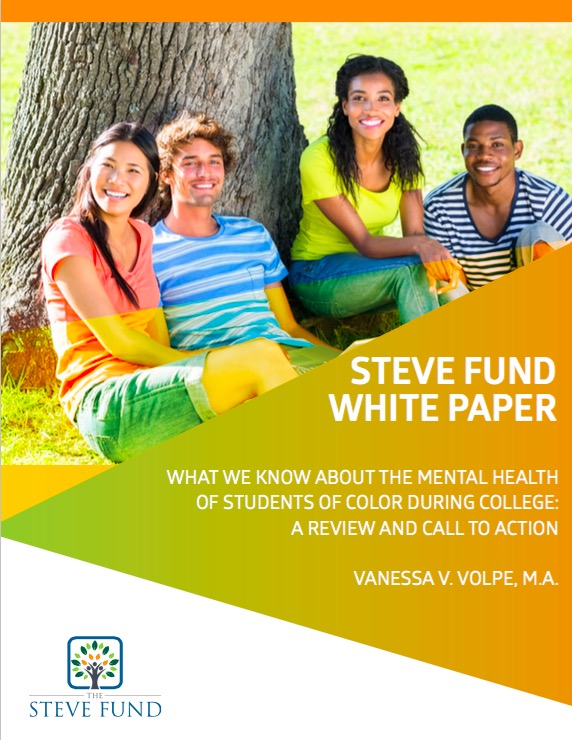 Volpe-Steve Fund white paper